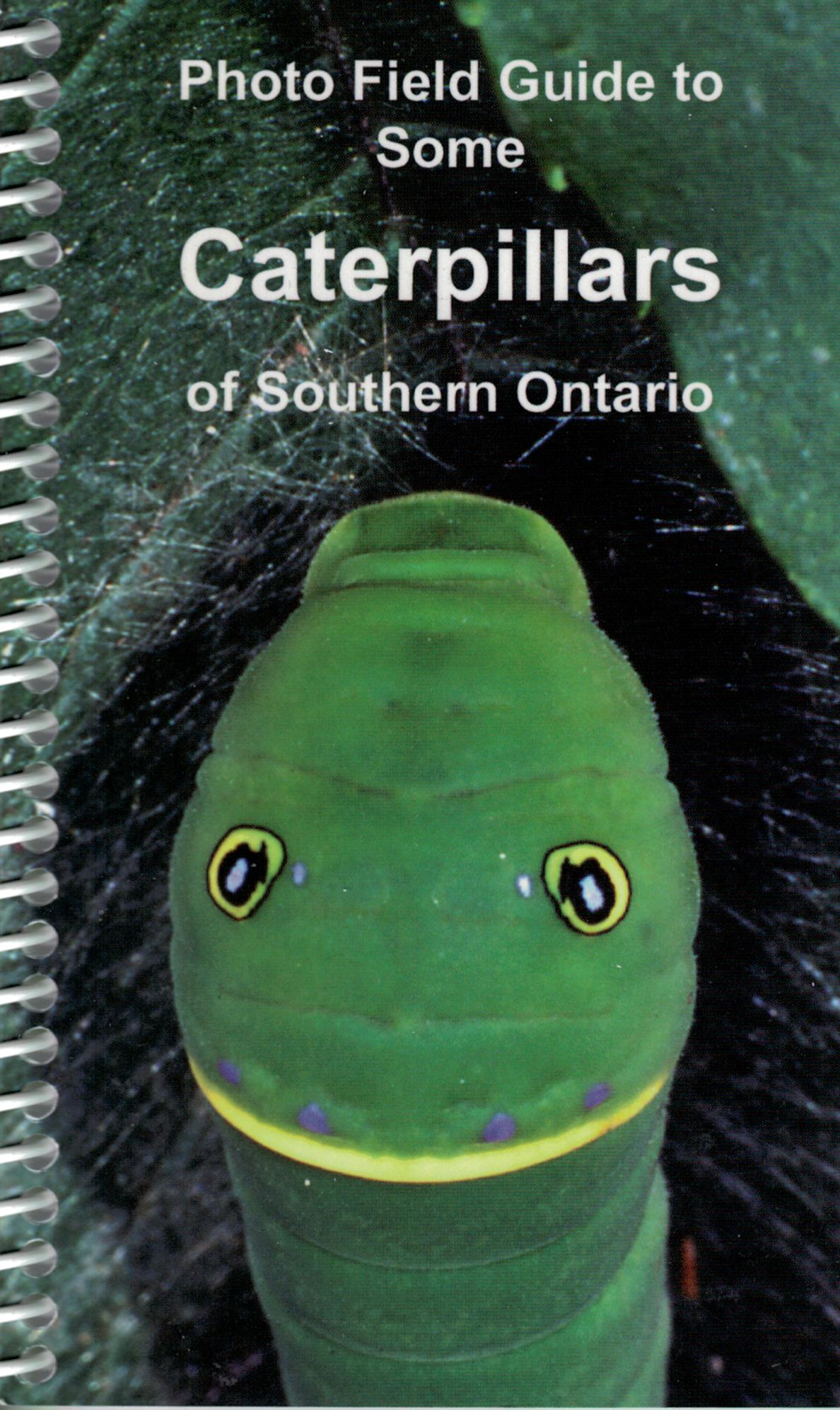 Photo Field Guide to Some Caterpillars of Southern Ontario