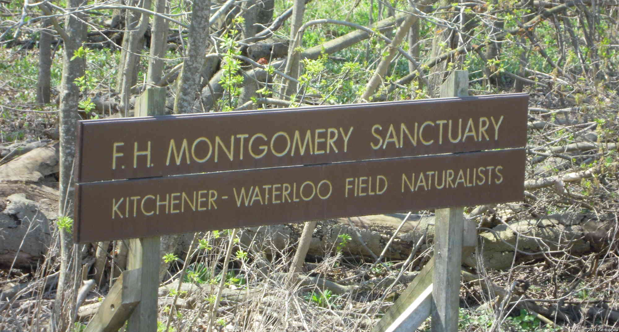 Montgomery Sign