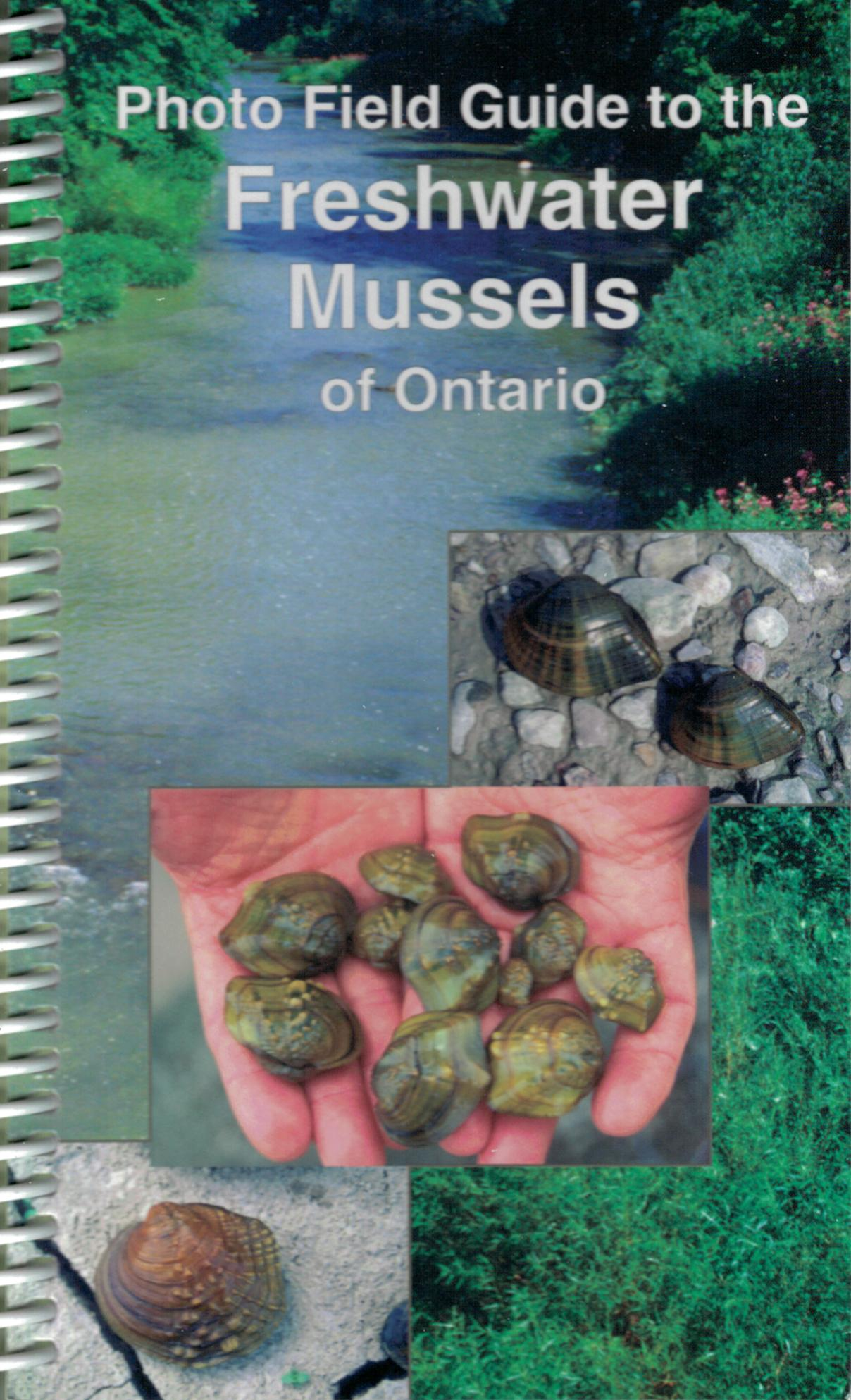 Photo Field Guide to the Freshwater Mussels of Ontario
