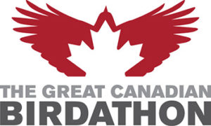 GCB Logo