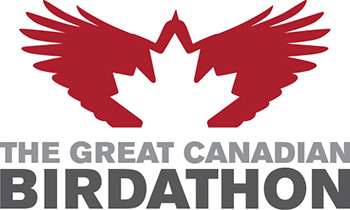 Great Canadian Birdathon Sponsorship 2018