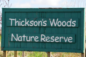 Thickson's Woods Outing Report