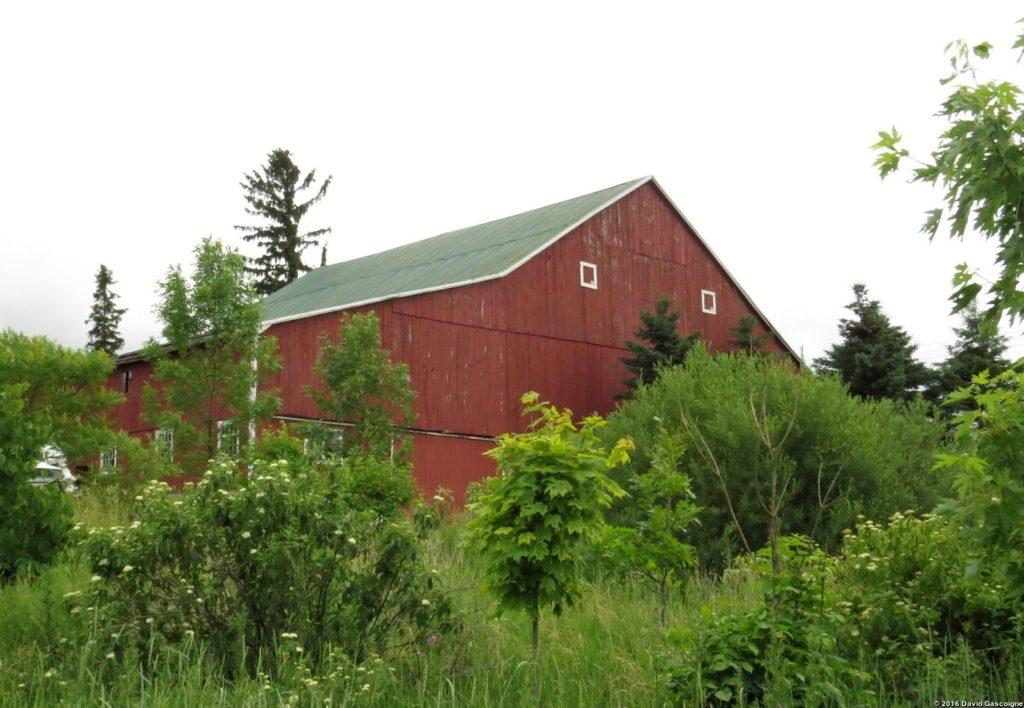 SpruceHaven Barn