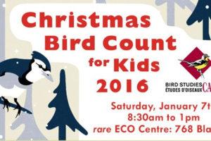 Christmas Bird Count for Kids 2016
