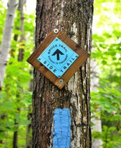 Bruce Trail side trail blaze