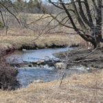Laurel Creek