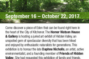 Hidden Valley Revealed – Call For Artists