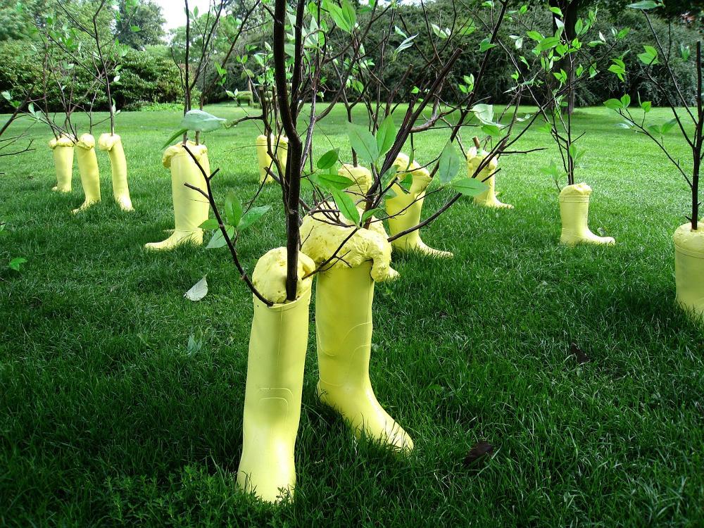 Shrubs-Tree-Grass-Park-Installation-Boots-Denmark