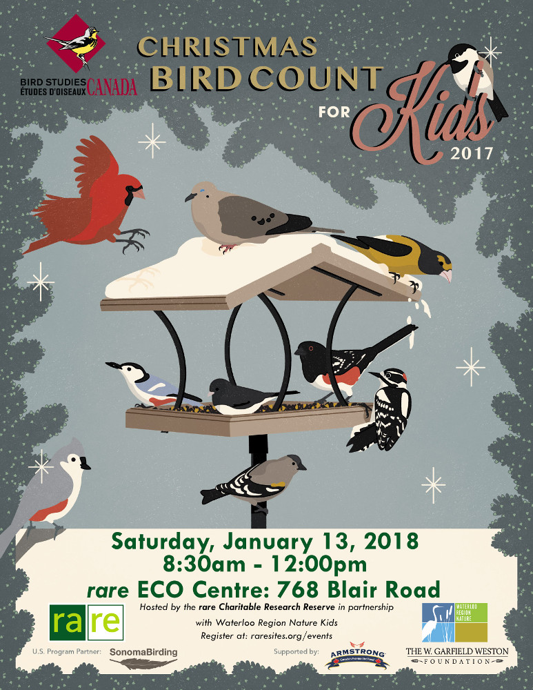 Christmas Bird Count for Kids 2017
