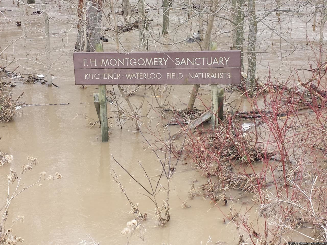 Montgomery Sign FLooded