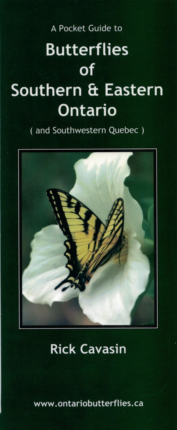 A Pocket Guide to Butterflies of Southern and Eastern Ontario