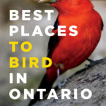 New Book – Best Places to Bird in Ontario