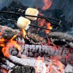 WRN Kids – Fire and Fireflies