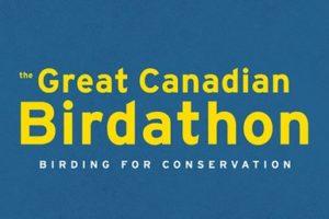 Great Canadian Birdathon Sponsorship 2020