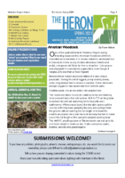 Spring 2021 The Heron