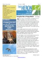 Fall 2021 The Heron